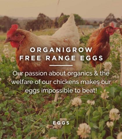 OrganiGrow