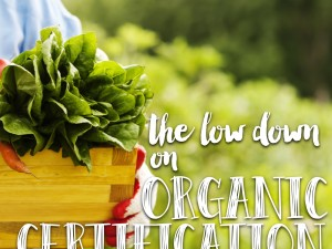 Who Accredits the Different Organic Certifiers?