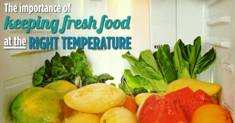 The-importance-of-fresh-food-temperature-FB-1200X628