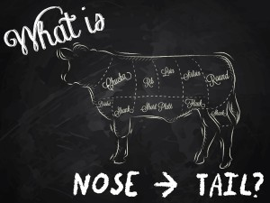 What is Nose to Tail?