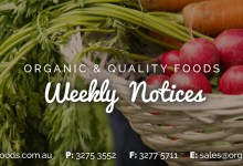 OQF Weekly Notice Week 30
