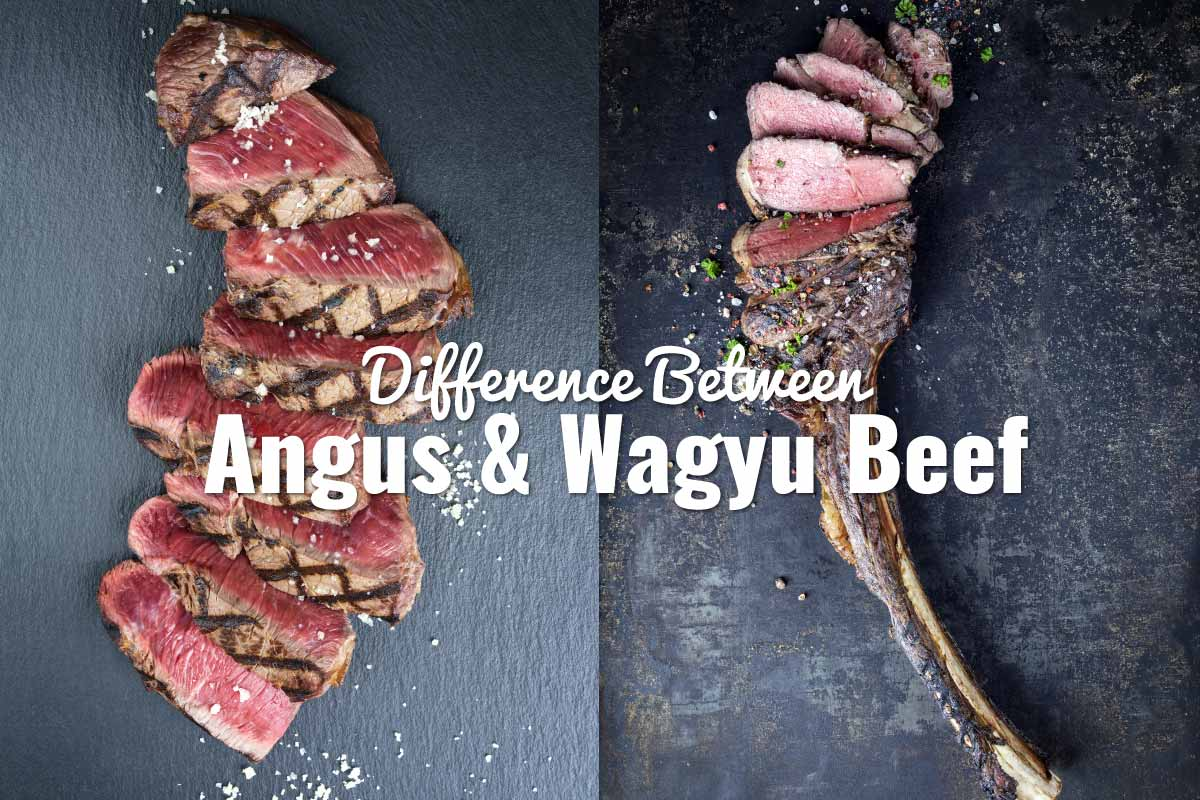 Difference-Between-Angus-and-Wagyu-Beef-header