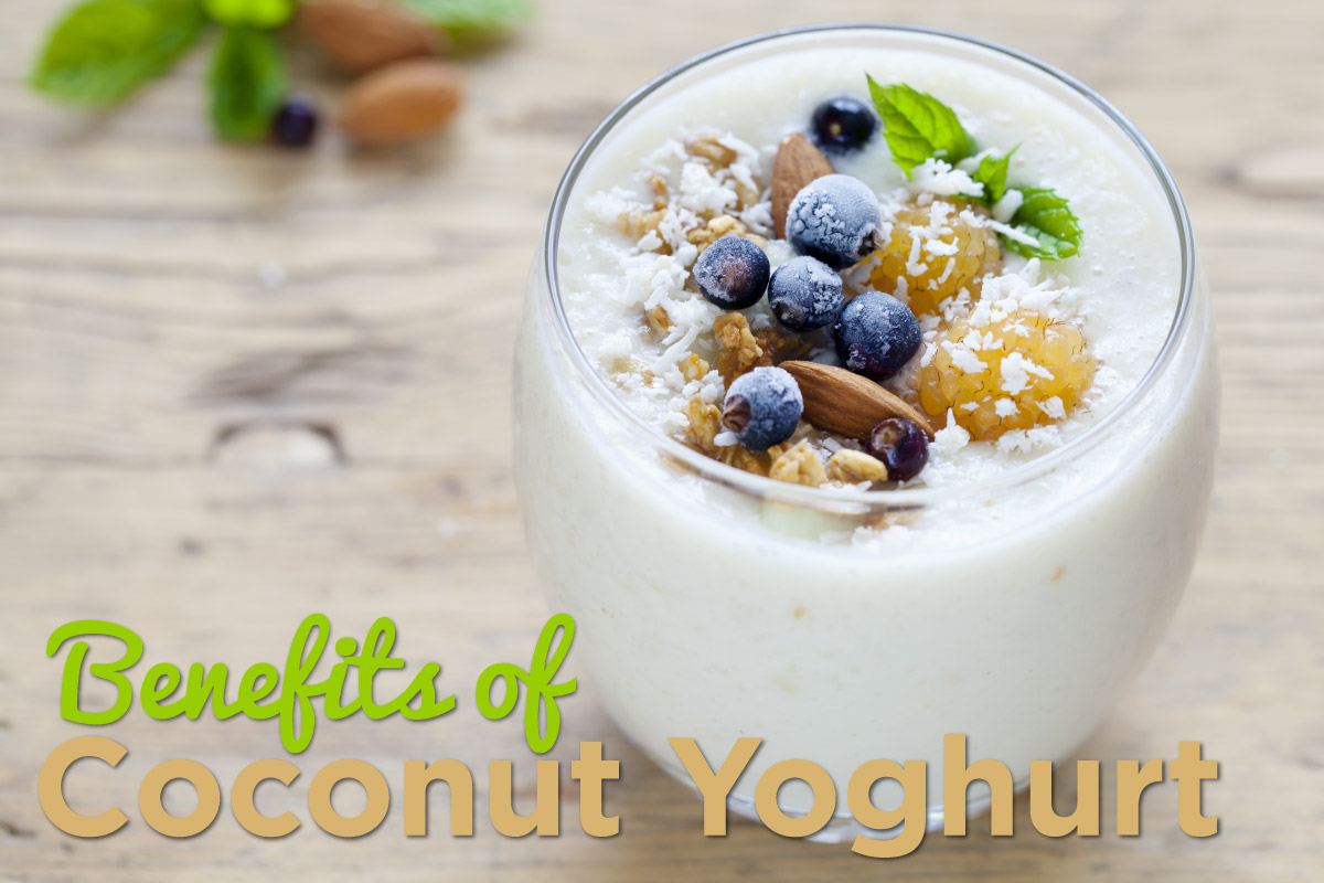 coconut-yohgurt-header-02