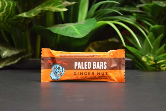 Blue Dinosaur Paleo Bar Ginger Nut 45g