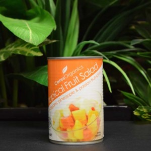 OOS Organic Tropical Fruit Salad 425g (can)