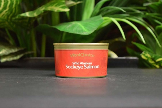 Wild Red Alaskan Sockeye Salmon 210g in can