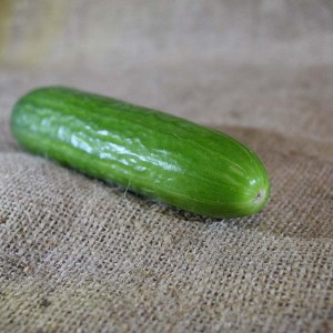 Cucumber Lebanese (100g)