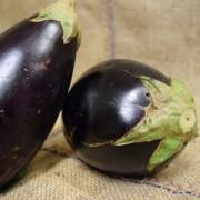 Eggplant MED (kg)