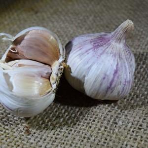 Garlic Purple/White (100g)