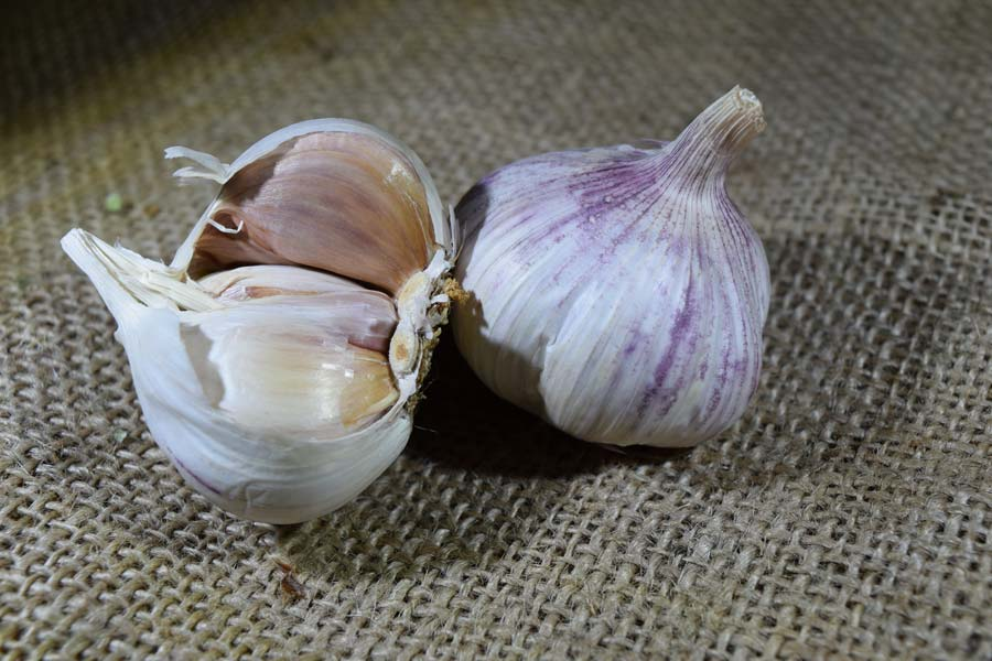 Garlic Purple/White (100g)