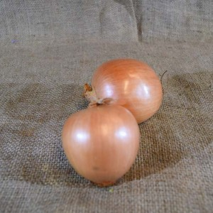 Onions Brown (kg) SPEC