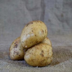Potatoes Sebago (kg)