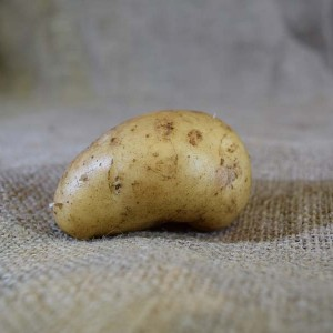 Potatoes Sebago (100g)