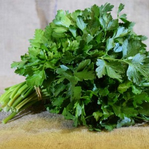 Herbs ... Parsley ITAL (Bch)