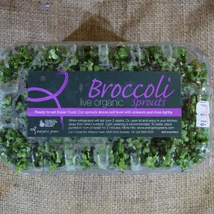 Sprouts Broccoli Live 250g