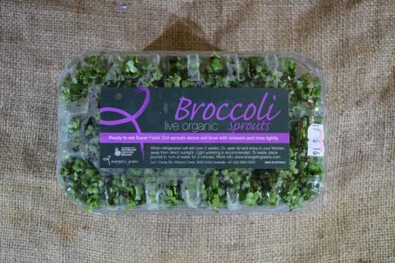 Sprouts Broccoli Live 250g