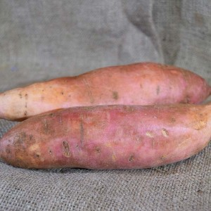 Sweet Potato Gold Med(kg)