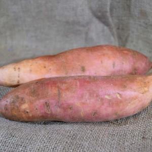 Sweet Potato Gold Med(kg)