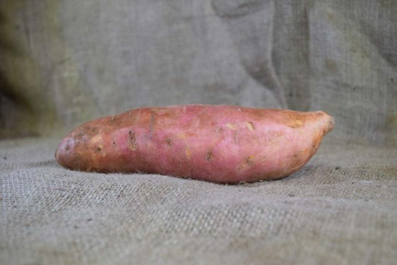 Sweet Potato Gold Med(100g)