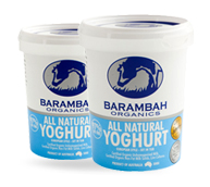 all-natural-yoghurt