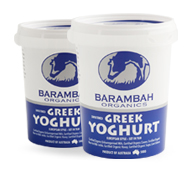 greek-yoghurt