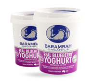 real-blueberry-yoghurt
